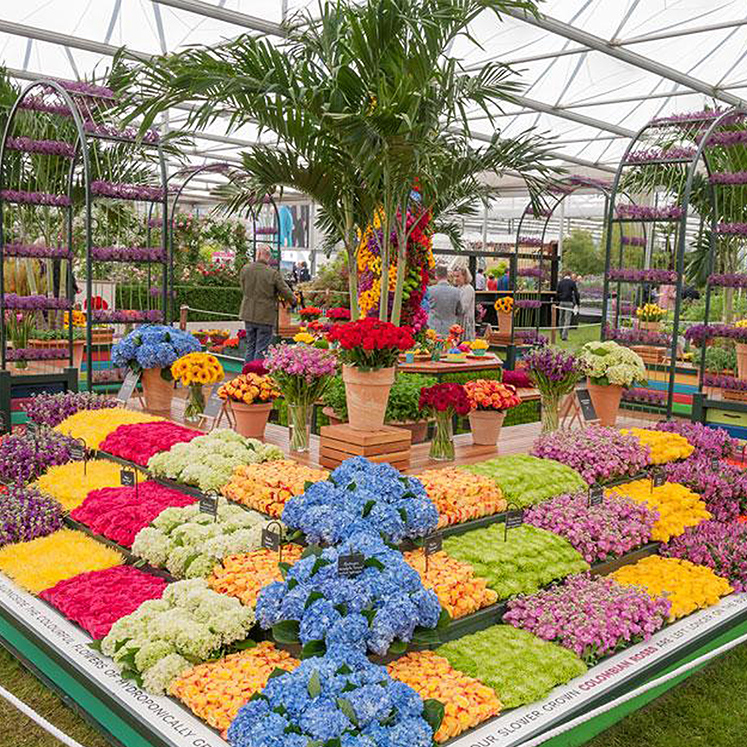 Chelsea Flower Show - Book Now