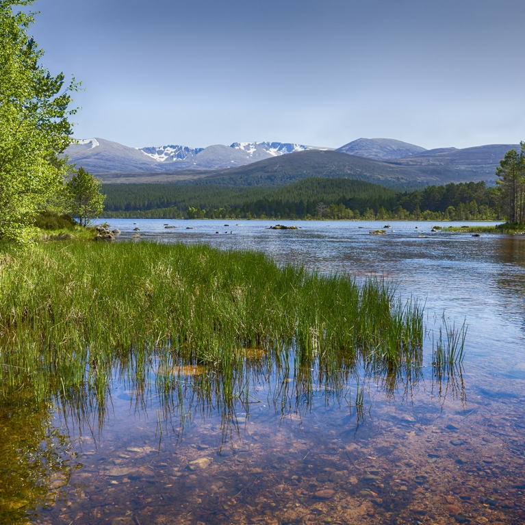 St Andrews & Cairngorms Superdeal - Book Now